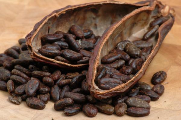 kakao diktat deutsch B2